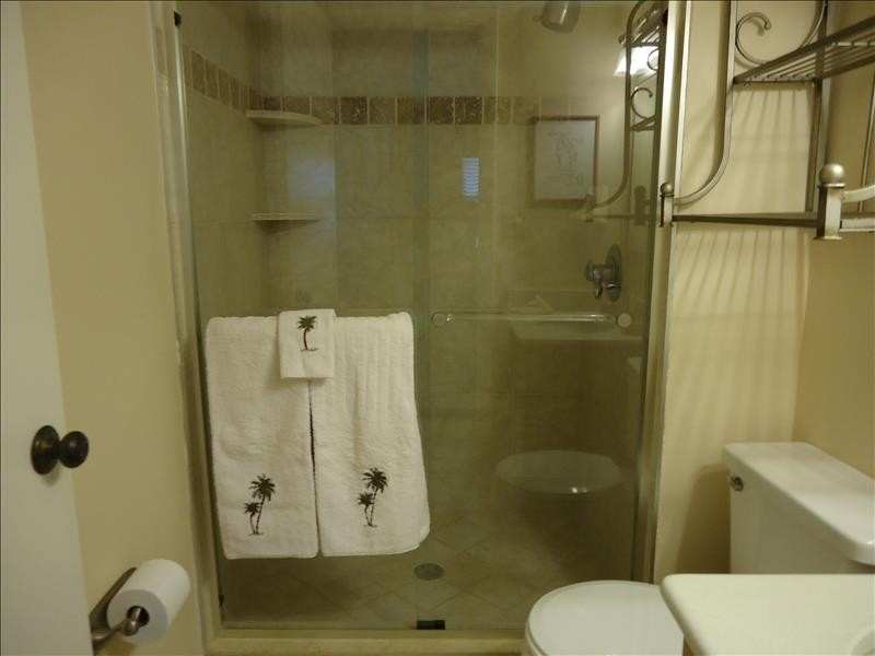 mster bath walk in shower 511
